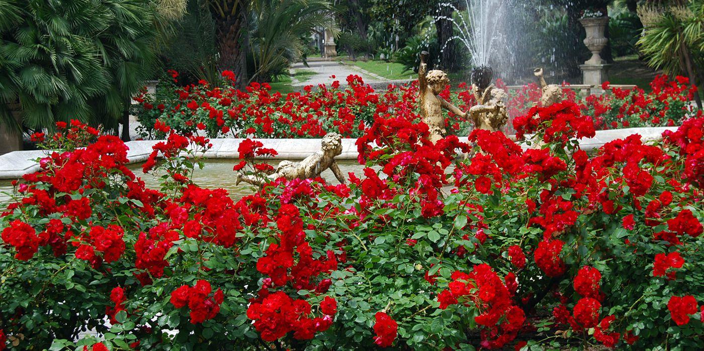 villa-ormond-fontana